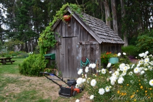garden-shed-in-botanical-gardens-10