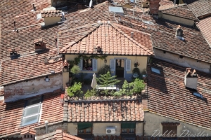 rooftops-in-italy-2