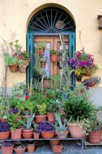 door-and-flower-pots-in-italy