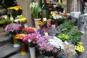 flower-market-in-bologna-italy