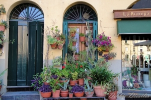 flower-pots-and-doors-in-italy