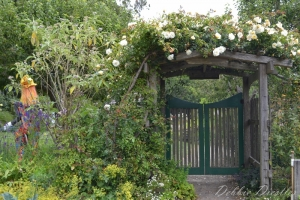 garden-gate-in-botanical-gardens-10