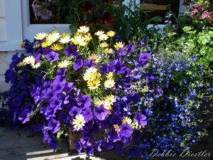 mendocino-bouquet
