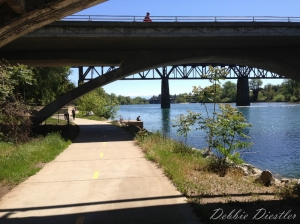 river-trail-in-redding-ca-spring-13
