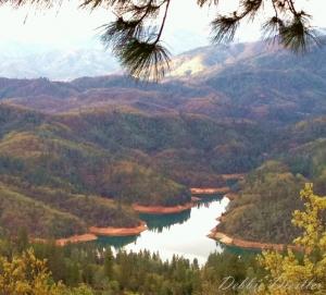shasta-lake-view