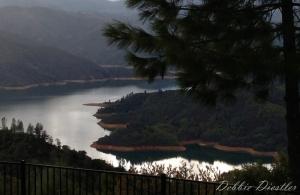 shasta-lake