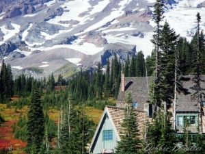 snow-patches-on-mt-rainier-10