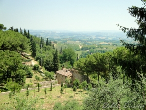 the-hill-town-of-san-gimignano-09