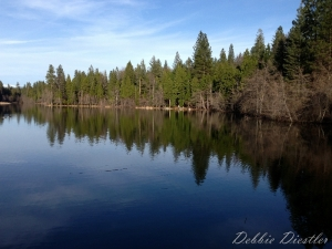 woodridge-lake-reflection-in-shingletown