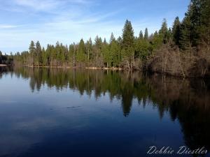 woodridge-lake-reflection-in-shingletown