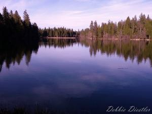 woodridge-lake-shingletown-ca